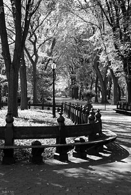 Photograph - Scenes From Central Park by Rob Hans