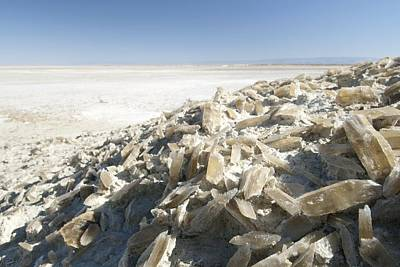 Selenite Crystals On A Dried Lake Bed Art Print by Louise Murray