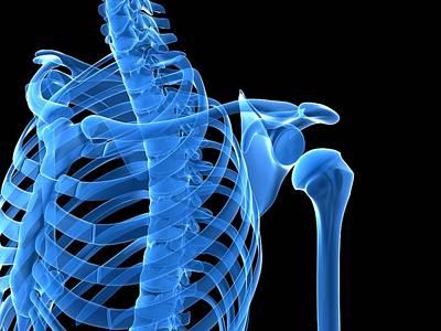 Shoulder Bones, Artwork Art Print by Sciepro