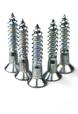 Shiny Thread Photograph - Silver Screws by Blink Images