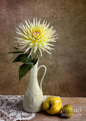 Vase Table Photograph - Still Life With Dahila by Nailia Schwarz