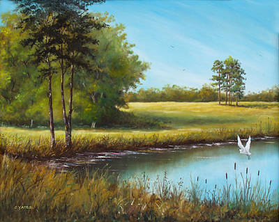 Cattle Egret Painting - Sunny Meadow by Charles Yates
