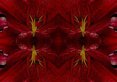 Concentration Digital Art - Symmetric Botany by Valeriy Krey