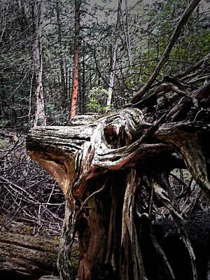 Photograph - The Deer God by Cyryn Fyrcyd