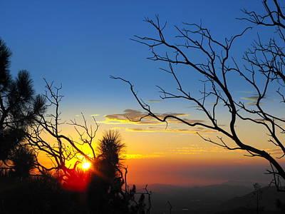 Manzanita Photograph - The Point by Skye Zambrana