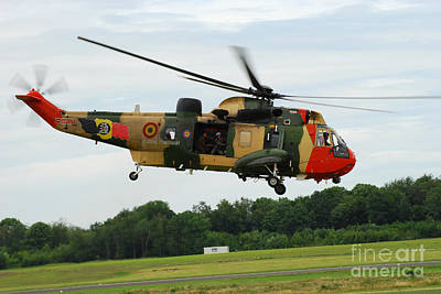 The Sea King Helicopter Of The Belgian Art Print by Luc De Jaeger