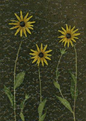 Computer Generated Flower Photograph - Three Yellow Flowers by Deddeda