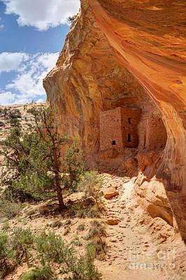 Tower Anasazi Indian Ruins - Utah Art Print by Gary Whitton