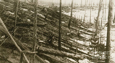Tunguska Event, 1908 Art Print by Science Source