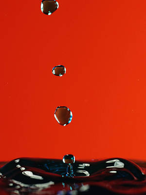 Photograph - Waterdrops by Paul Ge