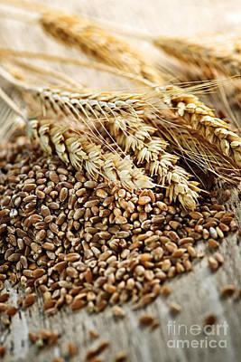 Whole Wheat Photograph - Wheat Ears And Grain by Elena Elisseeva