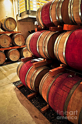 Photograph - Wine Barrels by Elena Elisseeva