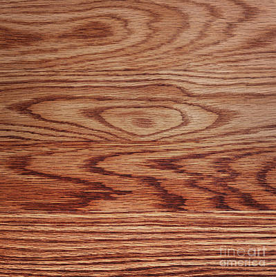 Wood Texture Print by Blink Images