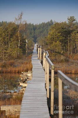 Rickety Bridge Photograph - Wooden Boardwalk Over Marsh by Jaak Nilson