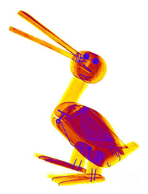 Photograph - X-ray Of A Wooden Duck Toy by Ted Kinsman
