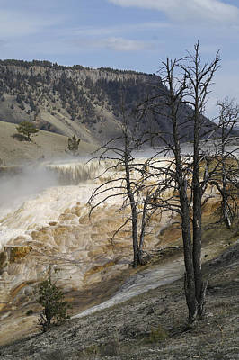 Photograph - Yellowstone Nat'l Park by Henri Irizarri
