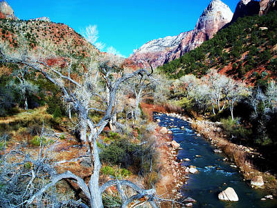 Photograph - Zion National Park by Sheila Kay McIntyre