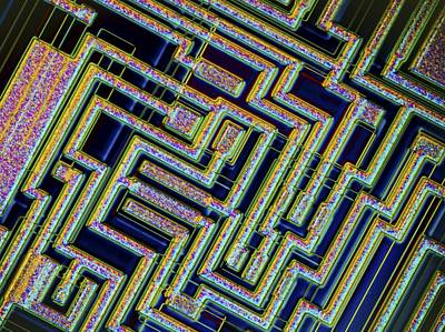 Microchip, Light Micrograph Art Print by Pasieka