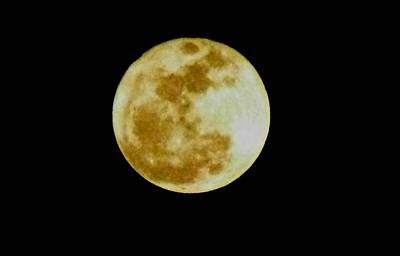 Art Print featuring the photograph 2011 Full Moon by Maria Urso