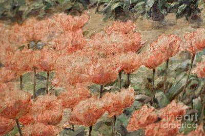 de Young Museum San Francisco Art Print