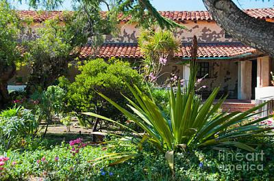Abstract Animalia - Gardens in Carmel Monastery by Carol Ailles