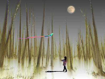 Kite Photograph - 2393 by Peter Holme III