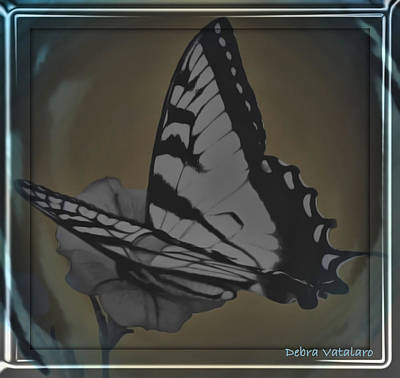 Butterfly Collection Art Print by Debra     Vatalaro