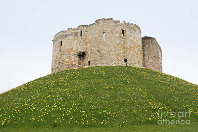Scenes From The City Of York  Art Print by Carol Ailles