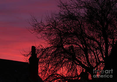 Colourfull Photograph - 2nd Ave Sunset This Evening by David  Hollingworth