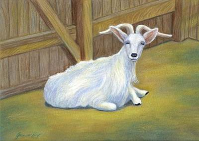 Painting - Billy The Goat by Jeanne Kay Juhos
