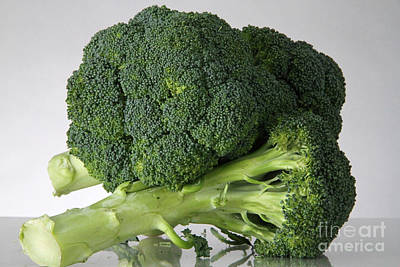 Broccoli Art Print by Photo Researchers, Inc.