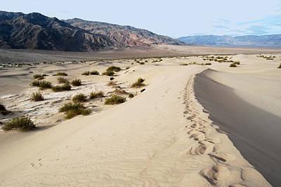 Death Valley National Park Mesquite Flat Sand Dunes Art Print by Eva Kaufman