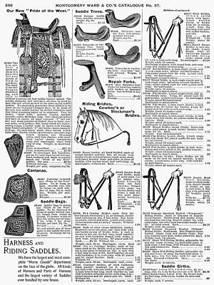 Equestrian Equipment, 1895 Art Print