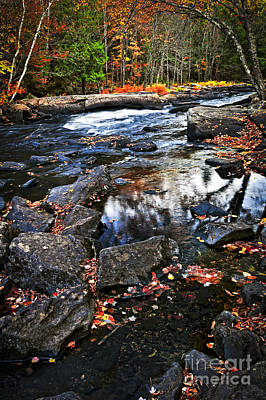 Fall Forest And River Landscape Art Print by Elena Elisseeva