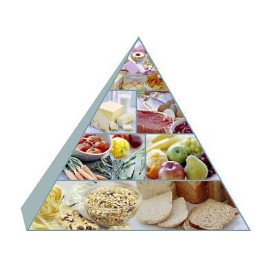 Food Pyramid Art Print by David Munns