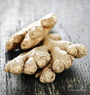 Tuber Photograph - Ginger Root by Elena Elisseeva