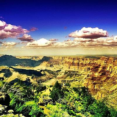 University Photograph - Grand Canyon by Luisa Azzolini