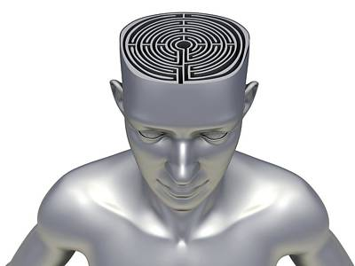 Maze Puzzle Photograph - Head With Maze by Pasieka