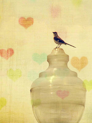Day Photograph - Heartsong by Amy Tyler