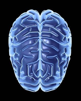 Human Brain, Artwork Art Print