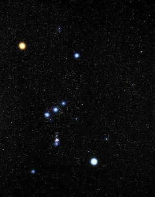 Betelgeuse Photograph - Orion Constellation by Eckhard Slawik