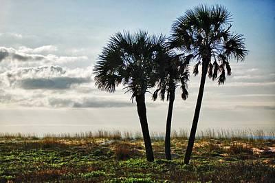 3 Palms On The Beach Original