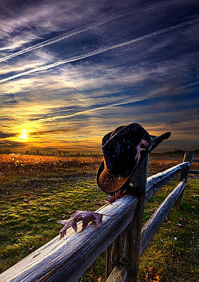 Resting Place Art Print by Phil Koch