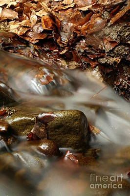 Sweating Photograph - River by Odon Czintos