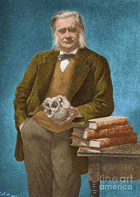 English Bulldog Drawing  - Thomas Huxley, English Biologist by Omikron