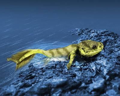 Tiktaalik Prehistoric Fish, Artwork Art Print by Victor Habbick Visions
