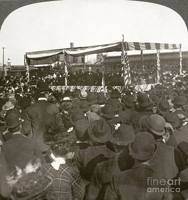 Waukegan Photograph - William Mckinley by Granger