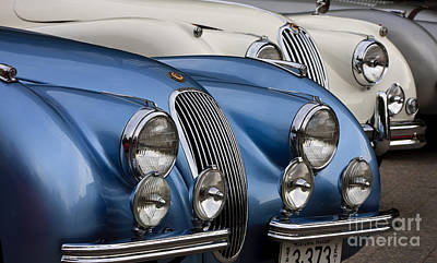 Photograph - 3 Xk's by Dennis Hedberg