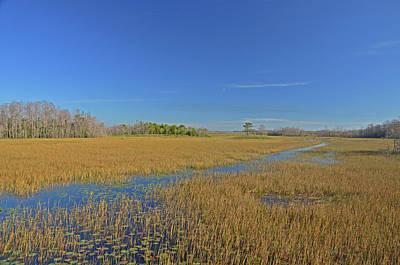 Photograph - 35- Grassy Waters by Joseph Keane