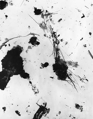 Asbestos Fibers Art Print